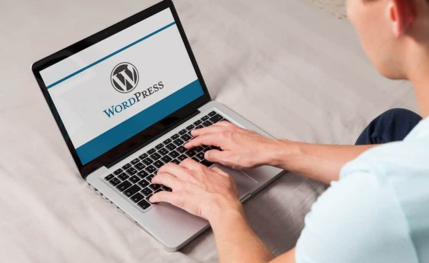 wordpress next stallion digital